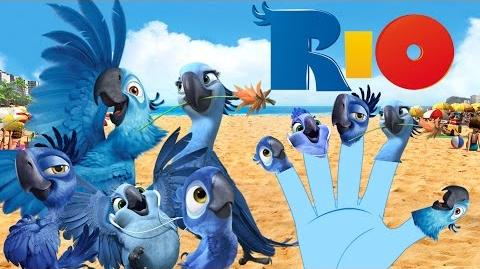 RIO Finger Family Nursery Rhymes for Children and Babies MYFINGER FAMILY RHYMES