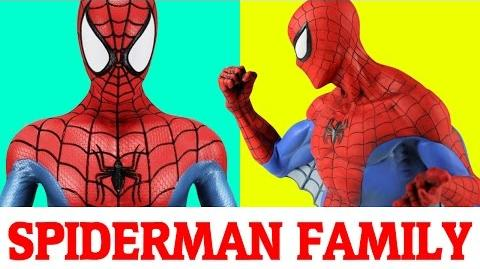 Spiderman Finger Family Nursery Rhymes songs for children -Finger Family rhymes