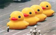 Chinese Rubber Duck Ban