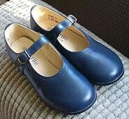 220px-Start-rite Louisa traditional bar shoes or Mary-Jane shoes