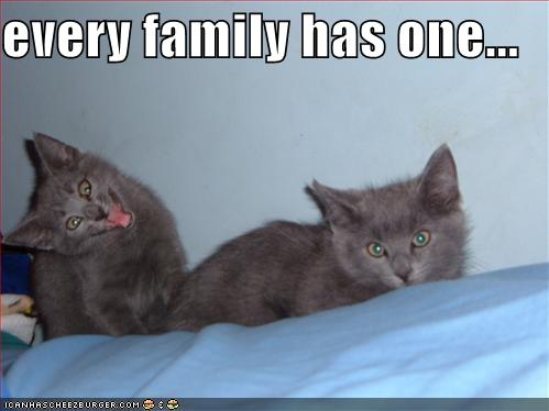 File:Every Family Has One.jpg