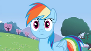 Dashie is not amused