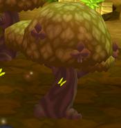 Club Tree