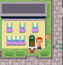Ashley's flower shop