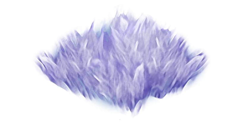 File:Purple Hairtuft Path.png