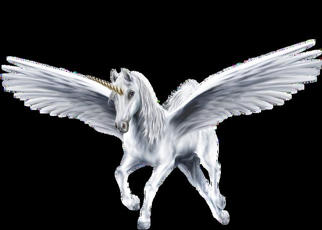 File:An-Beautiful-White-Winged-Unicorn-unicorns-39364232-1300-931.png