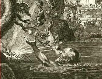 griffin mythology wiki fandom powered by wikia autos post