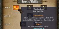 Spells & Skills