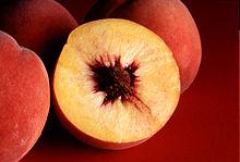 File:220px-Autumn Red peaches.jpg