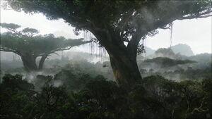 Rainforest-on-pandora-desktop-wallpaper-wallpaper-avatar-movie-high-res-rainforest-pandora-desktop-Pandora-Forest