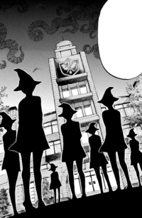 Seven New Witches