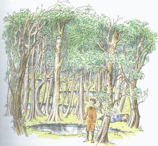 File:Woodbetweenworlds.jpg