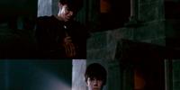 Edmund's Torch