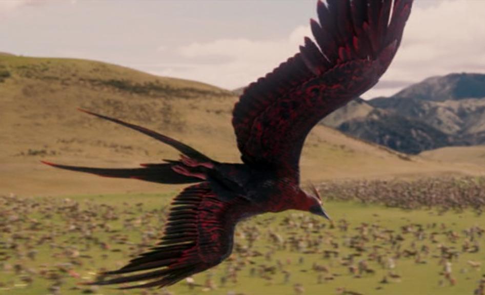 phoenix the chronicles of narnia wiki fandom powered