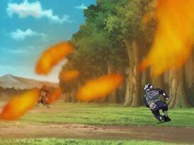 Fire Style - Phoenix Flower Jutsu