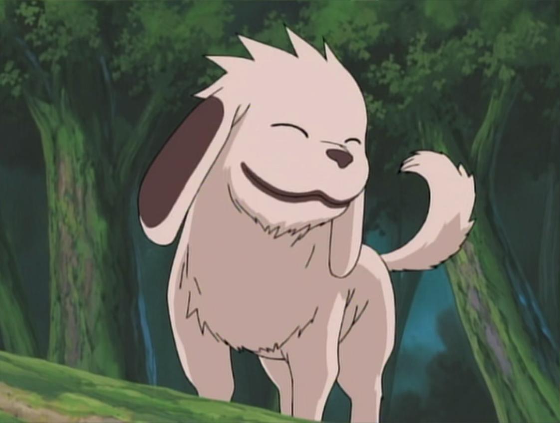 Kiba Dog Name