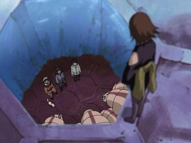 File:Suzumebachi's trap.png
