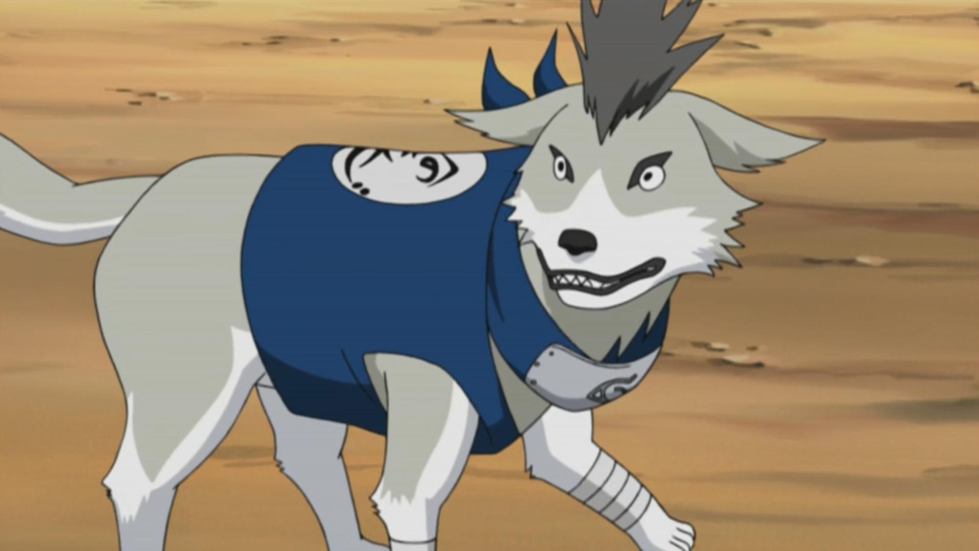 Shiba | Narutopedia | FANDOM powered by Wikia