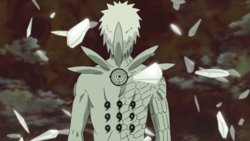 Obito's Jinchuriki Form from behind.png