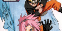 NaruSaku/Galleries