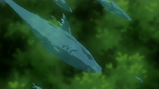 1000px-Rain Water Shark Wave