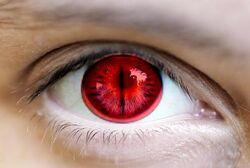 Kyuubi Eyes
