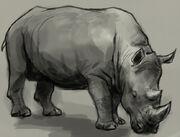 Rhino-drawing