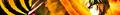 Thumbnail for version as of 18:45, September 28, 2012