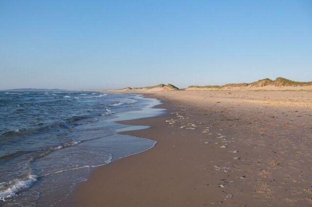 File:Ocean and beach.jpg