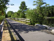 Green Pathway 2