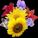 125px-Flower bouquet