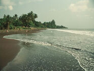 Coastal Valley