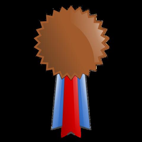 File:Bronze Medal 2.png