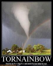 Tornrainbowp11