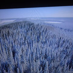 Photo taken from NASA drone which led 10 million Alaskans in bloatship US-49 to their new home.