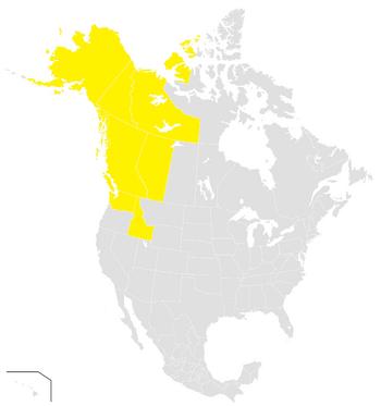 IPC Map