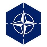 File:Natologo.jpg