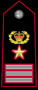 Chief Inspector Aide-Officer
