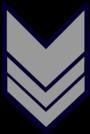 Brigadiere PS