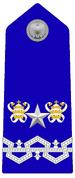 08 - Deputy Inspector