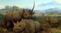 Black-rhinoceros dynamic lead slide