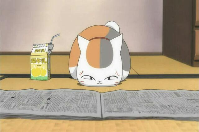 File:Nyanko-sensei-reads.jpg