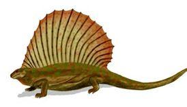 File:Edaphosaurus2.jpg
