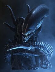 3Alien, aliens vs predator
