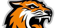 Rochester Tech Tigers