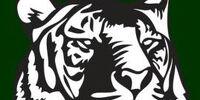 Salem International Tigers