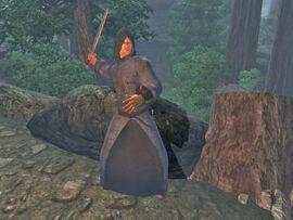 Battlemage of Etronar03