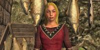 Merchant Anolia