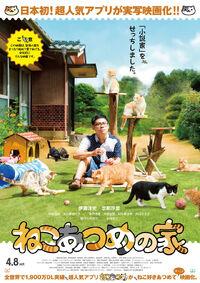 Neko Atsume no Ie Poster