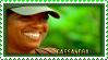 Stamp-Cassandra14